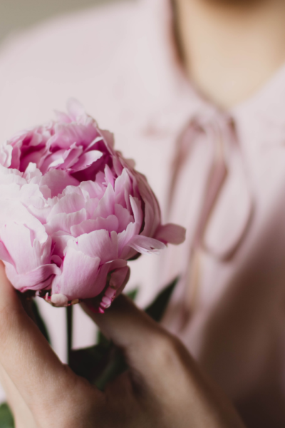 Best advice after Breast Cancer Diagnosis