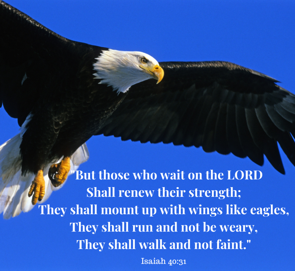 Isaiah 40:31 Wait on the Lord